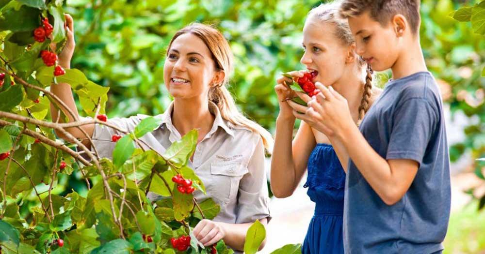 Học Nông nghiệp là học gì?